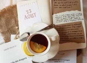 """Le 23 août 2018 sortie du livre """"Les citadelles T1 & T2"""" d'isabelle Morot-Sir"""